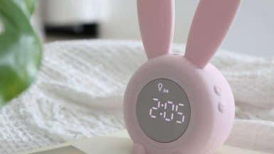 Réveils lapin
